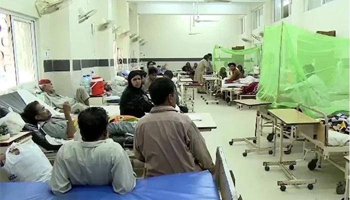 Peshawar: Dengue confirmed in 521 more people